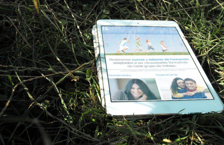Desarrollo web Aster psicólogos de Estella. Calle Mayor Comunicación y Publicidad.